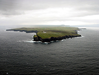 Loop Head Ross Formation