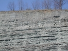 Kty Rt 62 Ordovician W of Maysville Apr 05