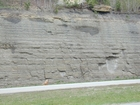 Pennsylvanian Breathitt Group Tidal Flat sediments I-64