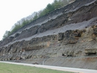 Ohio Shale of Devonian euxinic epeiric seas