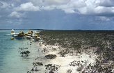 West Andros Bahamas