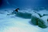 Stromatolites Lee Stocking Exumas Bahamas