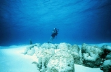Dr. Bob Dill floating like an ooid over his very own Stromatolites at Lee Stocking Island in the Exumas Bahamas