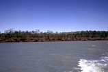 Norman River Carpentaria