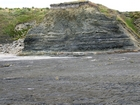 Pleistocene glacial heave in the overburden above the condensed deeper water sections with Goniatite fauna in the Ross Formation of Dunmore Bay