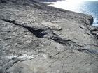 Exposures of a bedding plane surface in the Upper Carboniferous Ross Sandstone in which sand volcanoes overly local slumps of the deepwater sediment close to at Fisherman's Point. Volcanoes are built by sands transported by water released when the slide compacted beneath its own weight. Flank slopes reach 15° (Gill & Kuenen, 1958) with slightly concave outer slopes exhibiting flow runnels and ridges down the flanks with a central sand filledcrater (Strachen, 2002).