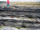 Spanish Point Cyclothem 4 and Doonlicky Co Clare