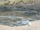 South Lumsdin's Bay Hook Head Carboniferous Porter's Gate Formation
