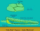 Lake McLeod Western Australia: Diagram by C. Robertson Handford