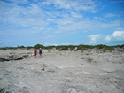 Pleistocene reef, beach, and dunes. Photo taken by Christopher Kendall