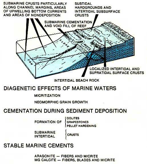 Zones of marine cementation